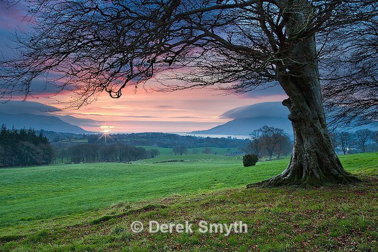 There's about a thirty minute hike to get to this location overlooking Carlingford Lough. I have made this journey many times trying to get the early morning sunrise. On most occasions all I got was dull overcast skies or even rain. Thankfully I was a bit luckier the morning I took this photograph in that I was actually able to see the sun for a change.