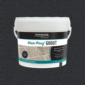 Shop STAINMASTER Classic Collection Anthracite 5.5 Pound(S) Antracite Unsanded Epoxy Grout at Lowes.com