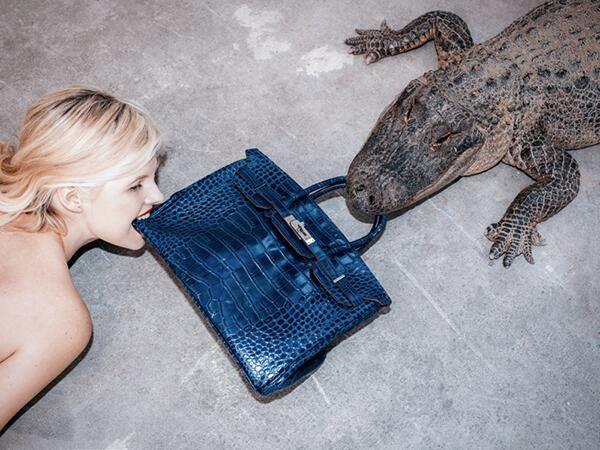 Watch: A crazy photographer fed this $100,000 Birkin to a Crocodile - #hermes