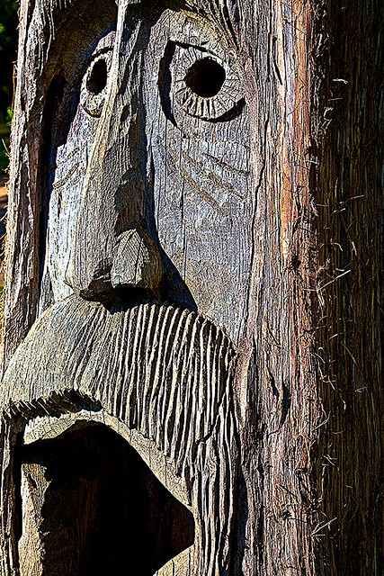 Roanoke Island Tree Carving
