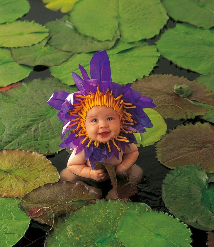 flower baby picture by Anne Geddes