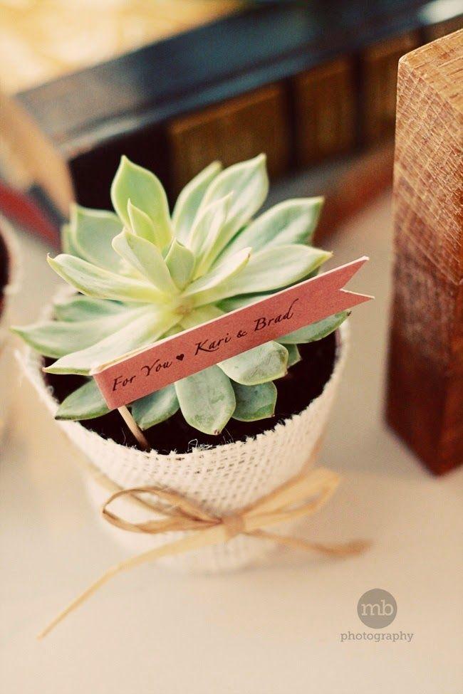 http://www.lesmoineauxdelamariee.com/2014/10/fleur-de-mariage-succulent.html