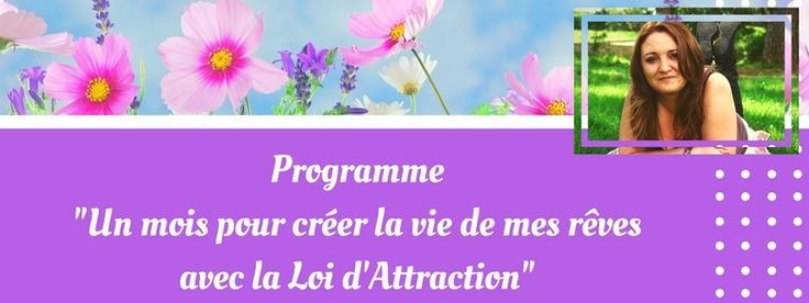 Programme Loi d'Attraction
