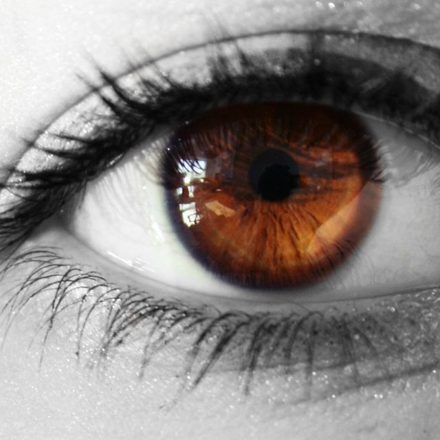 What's The Meaning Of Your Eye Color? || brown eyes. Fits perfectly :)