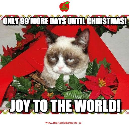 99 DAYS UNTIL CHRISTMAS!!!  ✳✳✳ www.BigAppleBargains.ca ✳✳✳ #MadeinCanada #shopifypicks #buylocal
