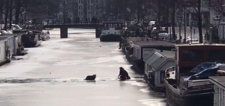 IJs op de Amsterdamse grachten is nog niet dik genoeg - Maar je hebt er altijd eentje tussen...