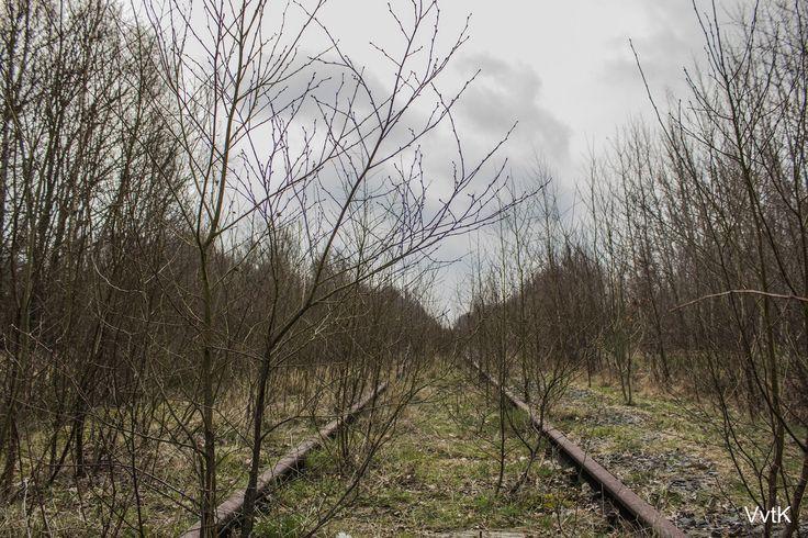 Verlaten spoorlijn #7   by Viktorvtk