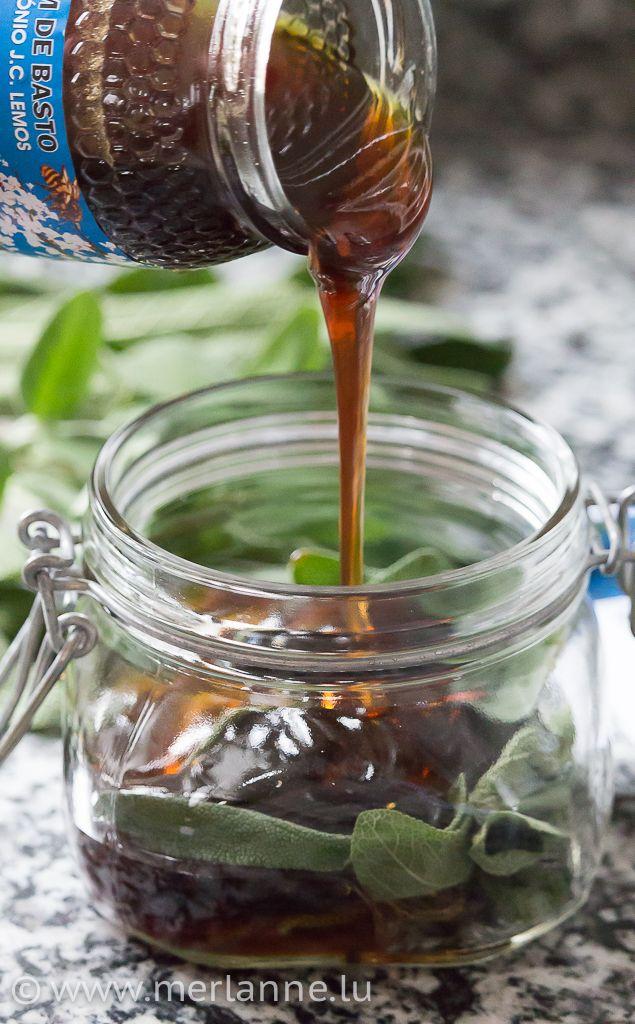 Salbei-Honig selbstgemacht
