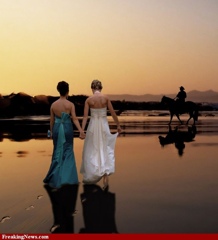 1804 Best Lesbian Wedding Ideas Images On Pinterest