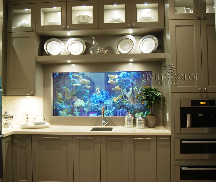 Kitchen Island Fish Tank best 20+ fish tank wall ideas on pinterest | home aquarium, wall