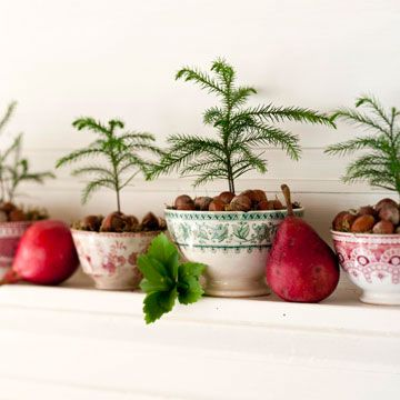 Plant mini evergreen trees in a mix of old red-and-green transferware bowls. Set on a mantel decorated with red pears and leaves for an interesting take on traditional holiday colors./