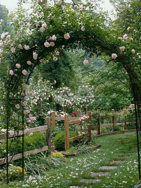 Roses.: Gardens Ideas, Fence, Secret Gardens, Gardens Arches, Climbing Rose, Step Stones, Pink Rose, Dreams Gardens, Flower