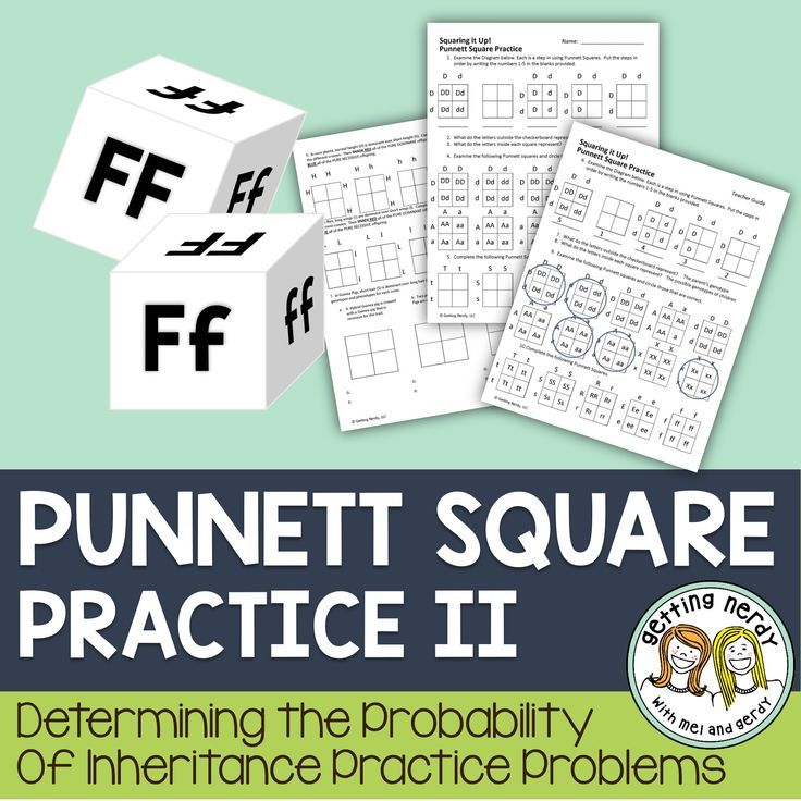 Punnett Square Practice for Genetics.   Engage your students with this scaffolded lesson to teach them the basics of Punnett Squares and have them work their way up to more difficult monohybrid cross practice problems. With multiple methods of assessing their knowledge of predicting probability, this lesson is great for all levels of learners and is differentiated throughout.