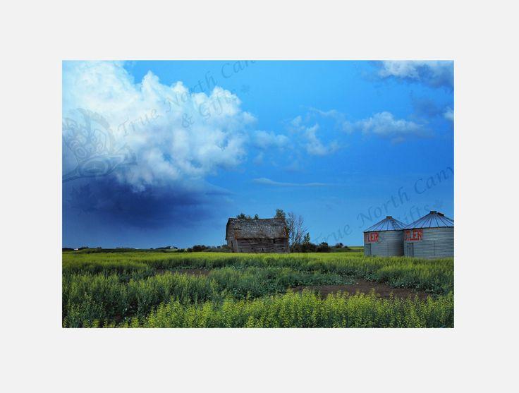 """""""Calm Before the Storm"""" Original Photography"""