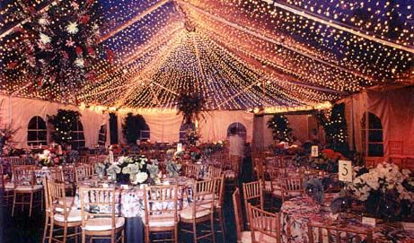 See Through Ceiling Tent | Top tents, Tent, Tent wedding