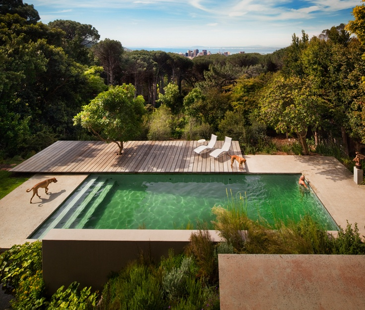 Pool / Bridle Road Residence in Cape Town, South Africa