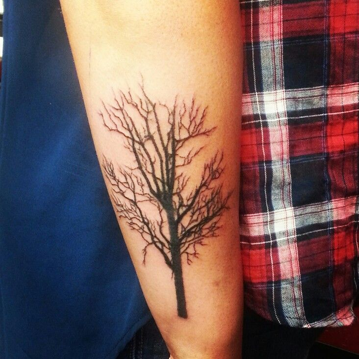 Freshly done tree tattoo done by jeff mitchell at for Tattoo oklahoma city ok