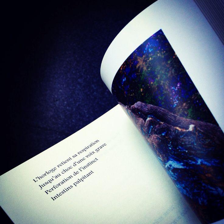 Poème extrait du recueil ÉCORCE D'ORAGE de Marisa Castro