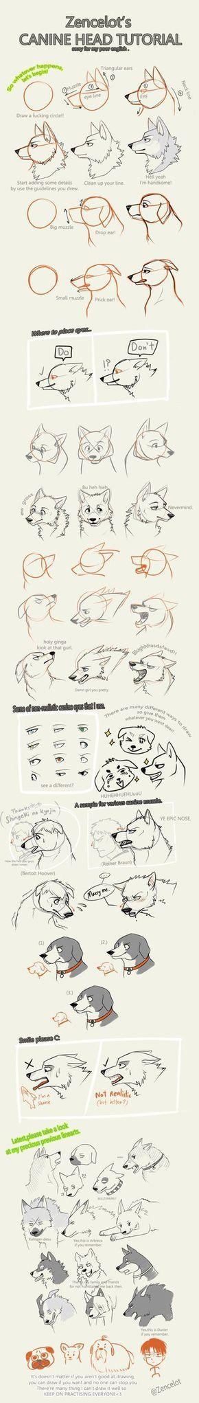 zency_s_canine_head_tutorial_by_zencelot-d6rjtt5.png (337×2373)