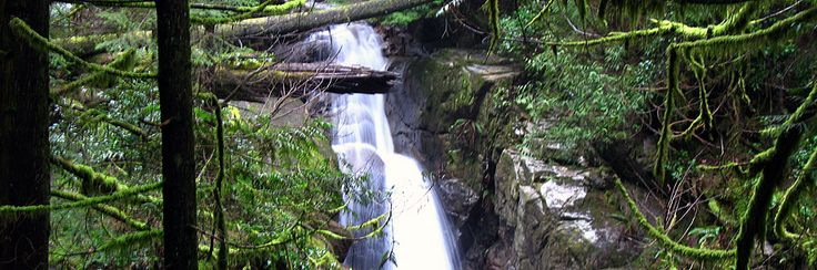 Cypress Falls - 3km if you do it once, but if you follow all the other interconnecting paths, it quickly adds up to a longer hike.  This place offers a nice natural mist that your skin will love.