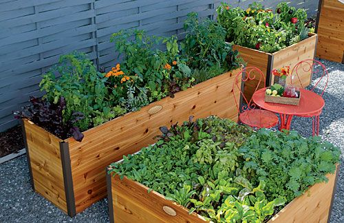 Planting Plans for Elevated Raised Beds Raised Garden