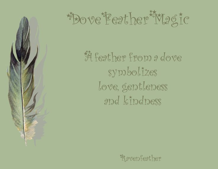 Dove feather magic