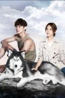 Prince of Wolf online sorozat