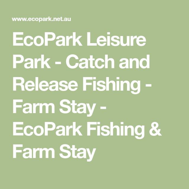 EcoPark Leisure Park - Catch and Release Fishing - Farm Stay - EcoPark Fishing & Farm Stay