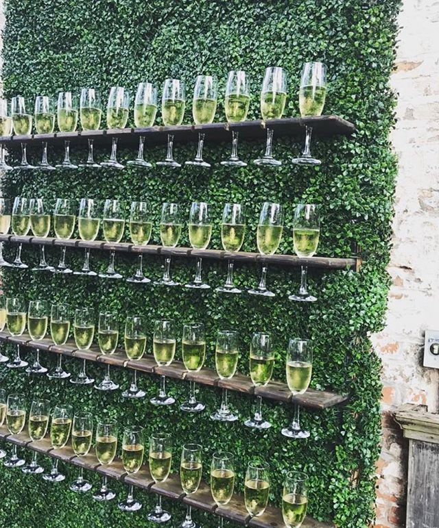 Fancy a Prosecco stand on our Hedge flower wall to greet