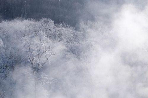 Xシリーズ写真展 作品紹介  2017春開催より きたやみゆきさんの作品 FUJIFILM X-T1  XF18-55mmF2.8-4 . けあらしの季節に マイナス25まで冷え込んだ日 池から立ちのぼるけあらしと樹々についた樹氷 真っ白な世界に夢中でした . Xシリーズ写真展 2017春札幌で開催中 5月19日(金)24日(水)10:0019:00 富士フイルムフォトサロン札幌 札幌市中央区大通西6丁目1番地 富士フイルム札幌ビル1階 TEL 011-241-7366 . Xユーザーの皆さまからお寄せいただいた作品を展示するFUJIFILM Xseries Japan主催 Xシリーズ写真展 2017春 Xユーザーの皆さまの素晴らしい作品を超光沢クリスタルプリントに仕上げ各地の富士フイルムフォトサロンフォトギャラリーにて展示します ぜひこの機会に皆さまの力作とともに写真プリントならではの豊かな階調と自然で鮮やかな色再現をお楽しみください . 詳しくは@fujifilmjp_x アカウントのプロフィールをご覧ください . 今後の開催日程…