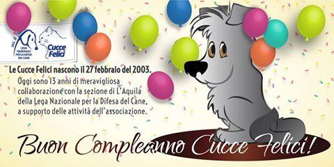 Il 27 febbraio 2003 nasceva il progetto delle #Cuccefelici a sostegno degli #animali accuditi dalla #LegadelCane di #LAquila in #Rifugio e sul #territorio. Buon compleanno!