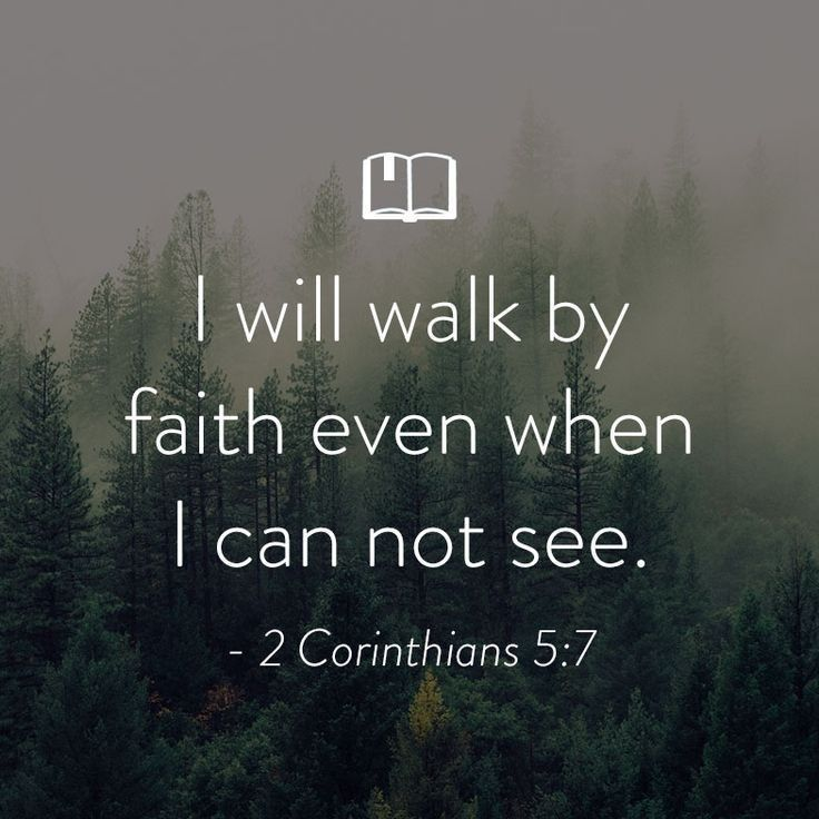 Motivational Quotes From The Bible Alluring 761 Best Bible Verses Images On Pinterest  Bible Quotes Bible