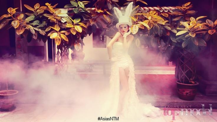 RABBIT - Chinese Zodiac Photoshoot, Asia's Next Top Model