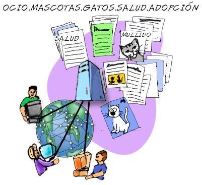 Editing 'MOOCAFE EN I.E.S. SAN FULGENCIO.' · Storify
