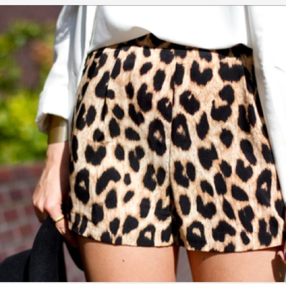 Leopard Print Shorts Cheetah Print Shorts. Super comfy material. Worn only once or twice. ASOS Shorts