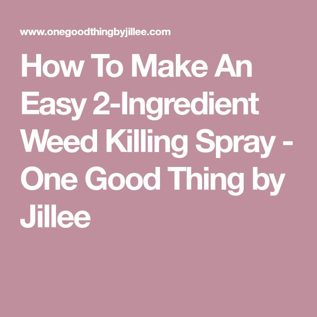 How To Make An Easy 2-Ingredient Weed Killing Spray - One Good Thing by Jillee