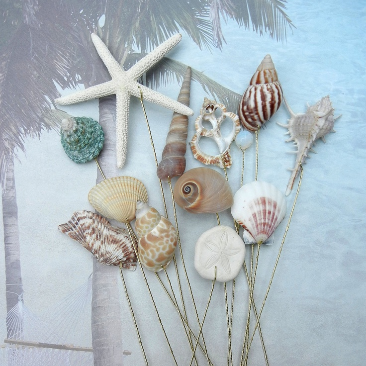 diy beach theme wedding centerpieces%0A    Naturally Colorful Large Seashells for Wedding Bouquets or Centerpieces  Beach  Wedding BouquetsBeach Themed