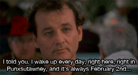 Groundhog Day Quotes   funny gifs