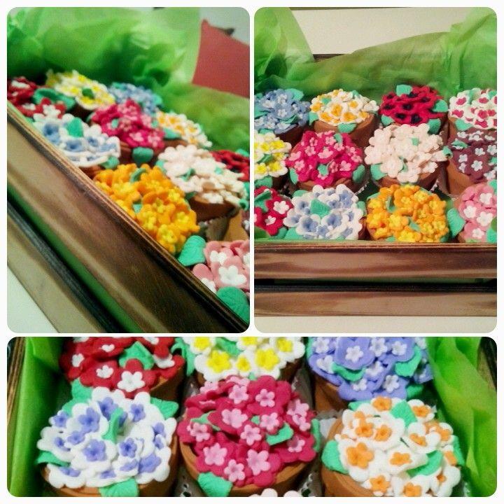 Minik saksilarda kasa kasa ciceklerimiz. # flowers #cupcake # cicek