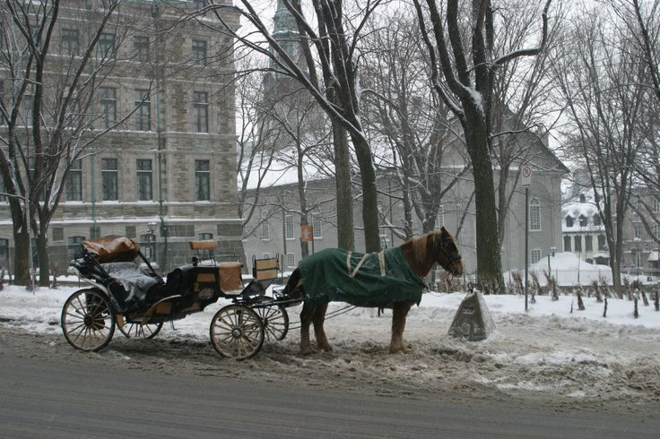 A caleche waiting at Place d'Armes outside the Chateau Frontenac on a snowy morning