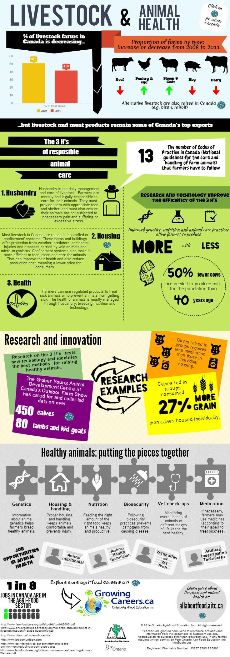Livestock and Animal Health Infographic from Ontario Agri-Food Education Inc.