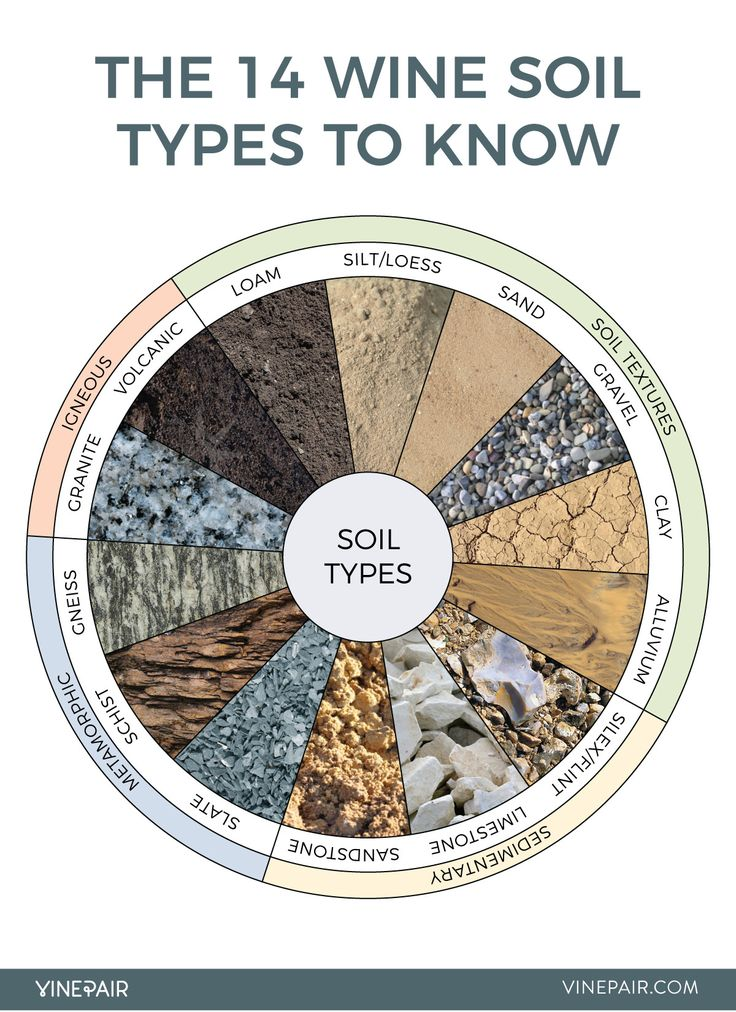 An Illustrated Guide to the Most Important Wine Soil Types - VinePair For those of us without a geology degree, VinePair created a helpful illustrated guide for an overview of the many soil types worldwide.