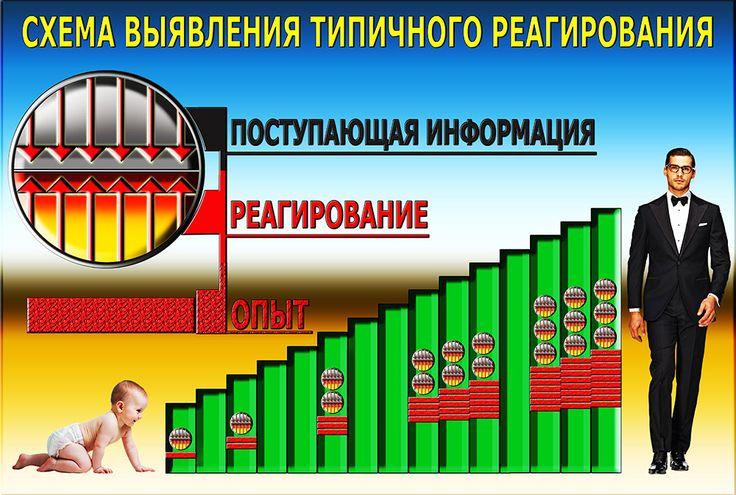 График 4. Опыт реагирования, график развития.