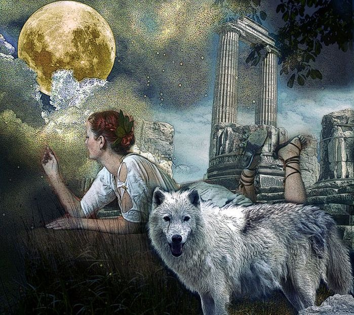 http://www.whitewolfpack.com/2015/01/22-fascinating-facts-about-wolves.html