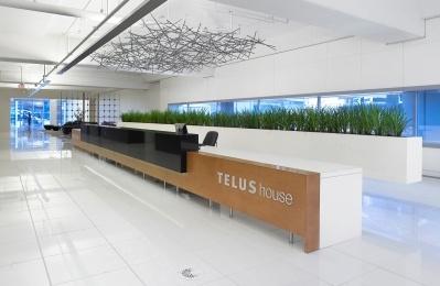 25 York Street Telus Reception Area