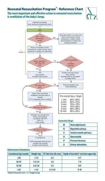 Neonatal Resuscitation Program Reference Chart