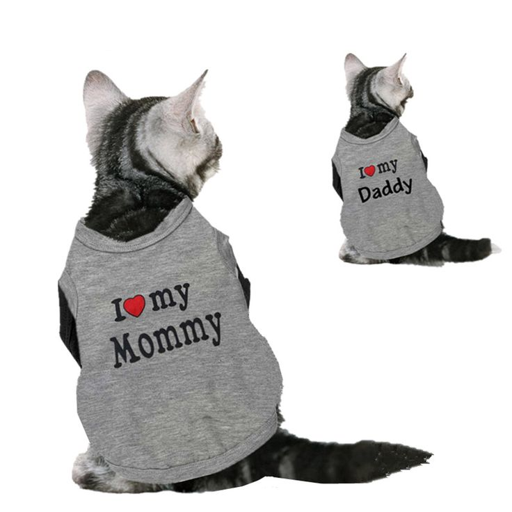 Cute Cat Clothes I love My Mommy & Daddy #cat #clothes - Available while supplies last! https://crazycatswag.com/cute-cat-clothes-cotton-pet-shirt-clothes-for-cats-vest-spring-summer-costume-pet-clothing-vest-for-cats-love-mommy-daddy-40s1/?utm_content=buffer97065&utm_medium=social&utm_source=pinterest.com&utm_campaign=buffer #catlovers #ilovecats #crazycatlady #catcostumes #ilovemymommy #ilovemydady