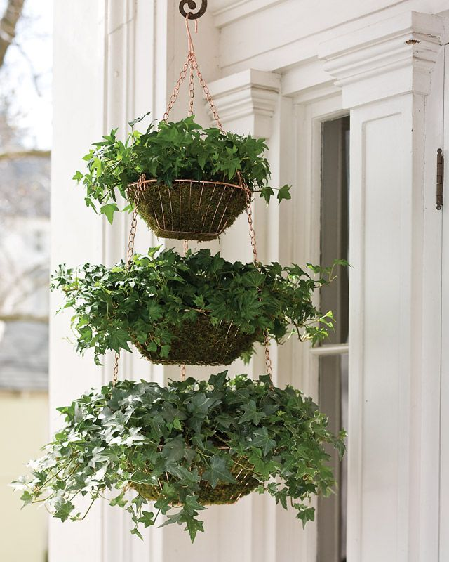 Create a verdant planter for your front porch using a trio of hanging wire baskets, sheet moss, and two containers of ivy.