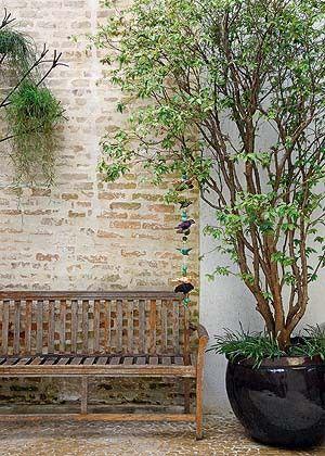 Jabuticabeira Linda, pode ser plantada em vaso. É preciso tomar o cuidado com a área disponível, em média uma área de 2 m² para cada fruteira em vaso. Use argila expandida no fundo, e uma mistura de terra vegetal, humus e areia até a metade do vaso. vaso preferencialmente 80 x 85.