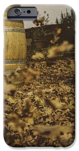 Fall In The Garden iPhone Case by Cesare Bargiggia
